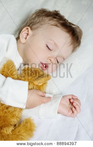 Toddler Boy Sweetly Sleeping With A Toy
