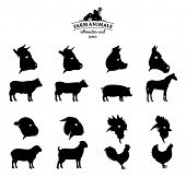 pic of working animal  - Farm animals icons and silhouettes collection - JPG