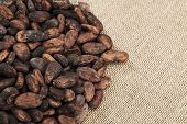 stock photo of cocoa beans  - Cocoa beans on burlap Food ingredients Close up - JPG