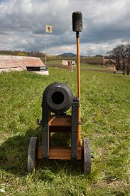 picture of cannon  - View of the old barrel cannon which stands on the grass - JPG