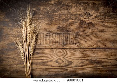 Sheaf of wheat on wooden background
