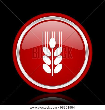 grain red glossy web icon chrome design on black background with reflection