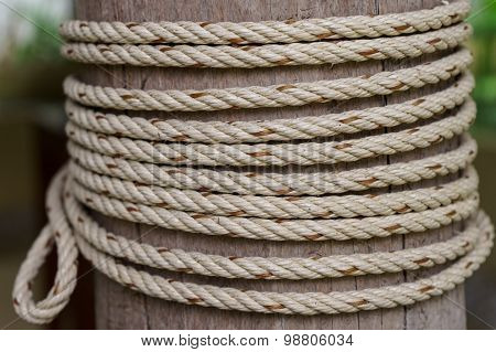 Rope Tied To A Wooden Pole