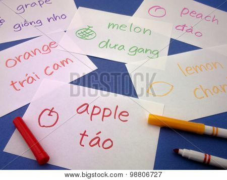 Making Language Flash Cards; Vietnamese