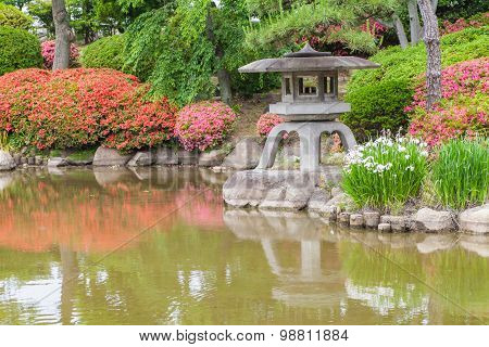 Beautiful japanese green garden in summer season