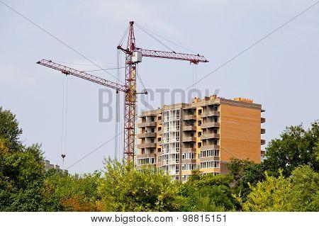 Crane Builds House