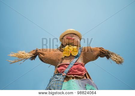Cute Colorful Scarecrow Under Bright Blue Sky