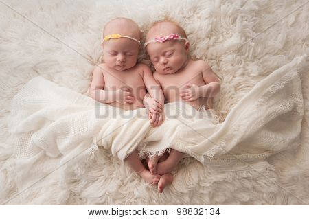 Sleeping Twin Baby Girls