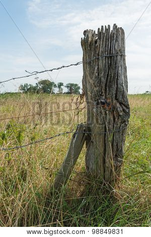 Weathered Wooden Post With Barbed Wire From Close