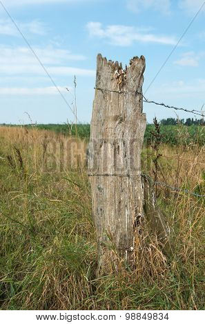 Weathered Wooden Pole With Barbed Wire From Close