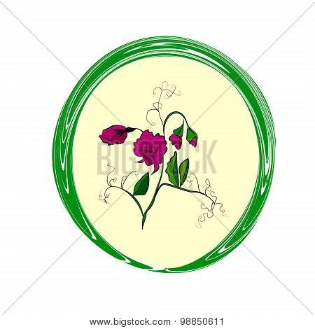 Flower sweet pea
