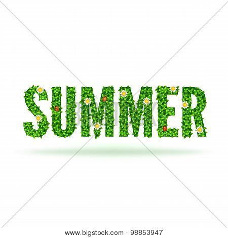 Word Summer with green leaves