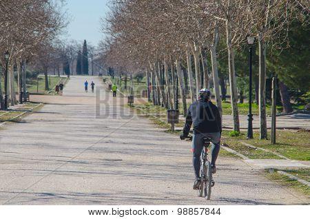 Biker In A Park