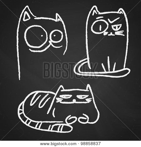Funny Chalk Cats