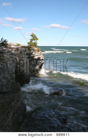 Cave Point Tree And Waves