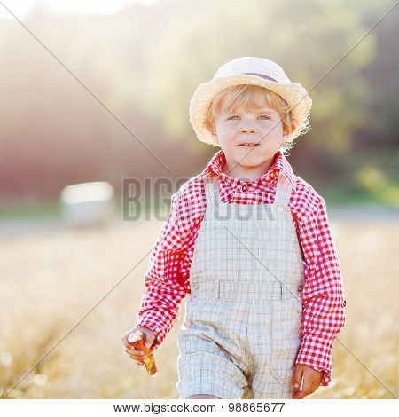 Little Toddler Boy  Walking Happily Through Wheat Field