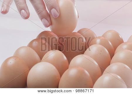 The chosen egg