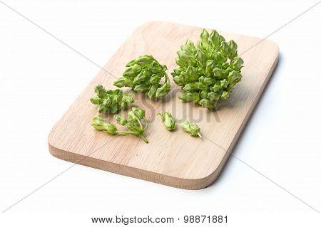 Thai Herbal Food Ingredient Cowslip Flower