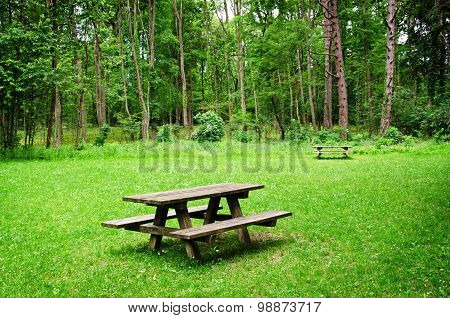 Wooden bench and table in the forest.