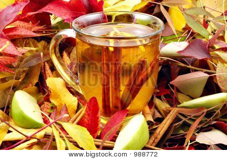 Autumn Cider