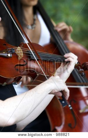 Violin Player Playing Music For A Wedding Or Event