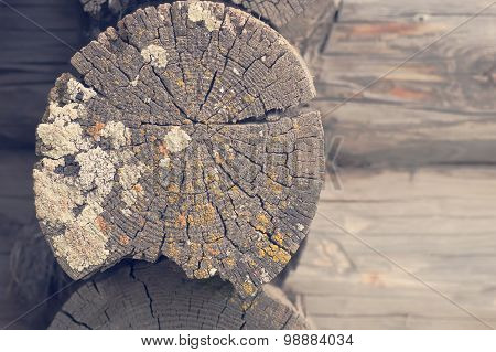 Old wooden log wall