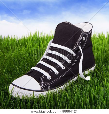 Single Youth Sneakers On A Green Grass