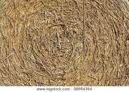 Background Texture, Round Straw Bale