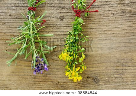 St. John's Wort And Lavender Hanging To Dry In Front Of Rustic Wood