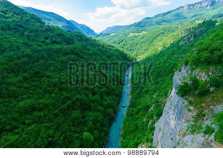 Tara River And Canyon