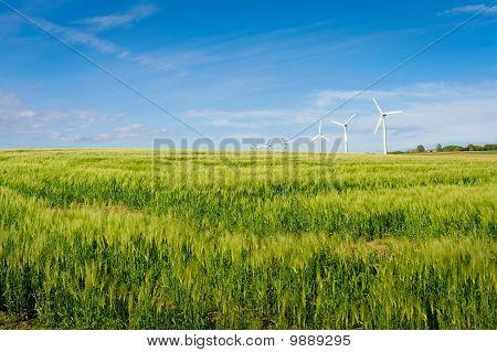 Wind Turbine On Bornholm Island