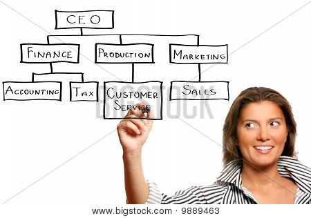Young Businesswoman Presenting A Business Hierarchy