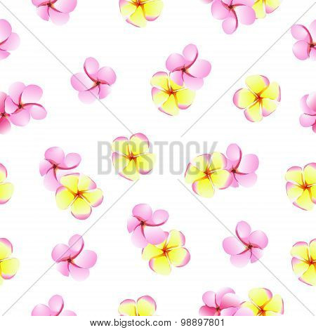 Pink And Yellow Plumeriaflowers Seamless Vector Pattern
