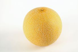 foto of musky  - White green yellow melon Full and Sliced Cantaloupe Isolated on White Background - JPG