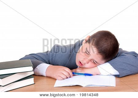Boy Sleeping While Doing Homework