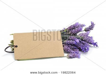 a bunch of lavender flowers with a blank paper label on a white background