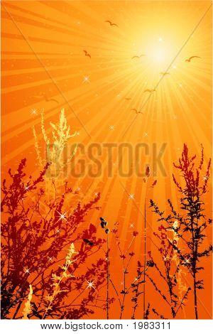 Summer Landscape, Vector
