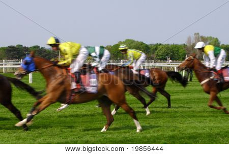 Speeding racehorses