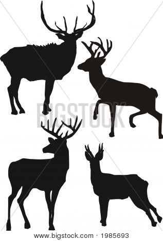 Illustration With Deer Silhouettes