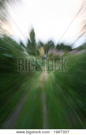 Velocidad Rush