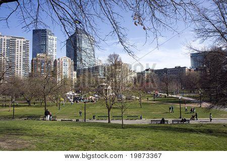 Pond In Boston Common Garden