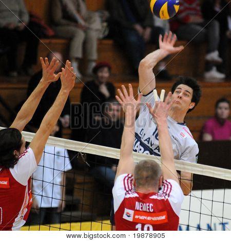KAPOSVAR, HUNGARY - JANUARY 22: Ferenc Nemeth (in white) strikes the ball at a Middle European League volleyball game Kaposvar (HUN) vs. HotVolleys Wien (AUT), January 22, 2010 in Kaposvar, Hungary.