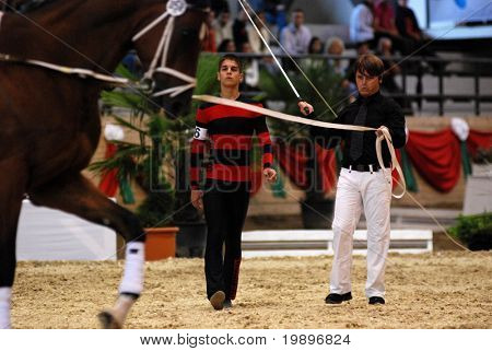 KAPOSVAR, HUNGARY - AUGUST 12: Tomas Sator (L) (SVK) in action at the Vaulting World Championship Final on August 12, 2007 in Kaposvar, Hungary.