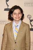 LOS ANGELES - MAY 5:  Max Burkholder arriving at the 4th Annual Television Academy Honors  at Beverl