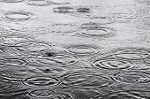 stock photo of naturel  - Raindrops on the water surface - JPG