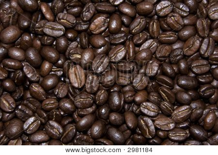 Coffe Beans Texture Background