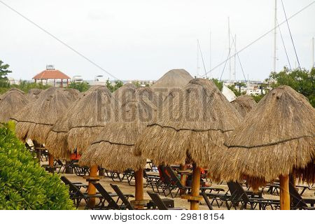 Thatched Straw Umbrellas On Tropical Beach