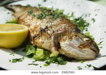 Grilled Delicious Trout On Plate