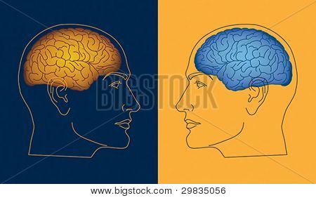 Two opposite human profiles with colored brain inside heads
