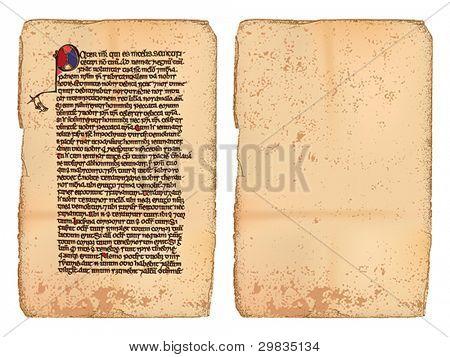 alte Schriftrolle (Manuskript) und leere Seite